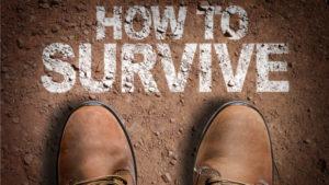 survive-shutterstock_368707073-800x450